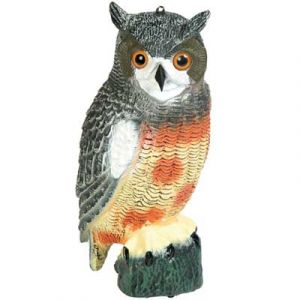 Great American Owl Decoy